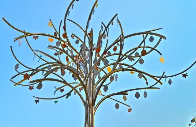 Memorial tree, photographed by Shweta Shreyarthi.