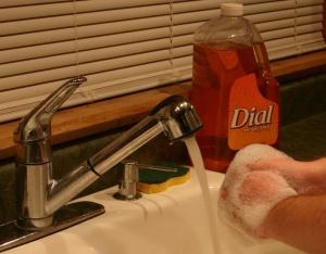 Handwashing photo courtesy of USDA.gov