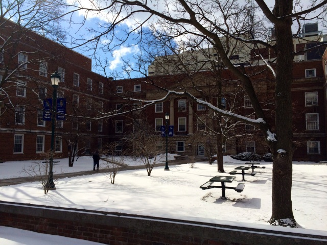 Snow glistens in the courtyard of Weiskotten Hall on Feb. 28. Photo by Susan Cole.