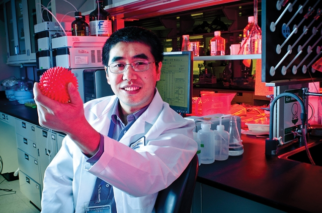Juntao Luo, PhD, holds a model of a polymer nanoparticle in his Upstate laboratory. (PHOTO BY WILLIAM MUELLER)