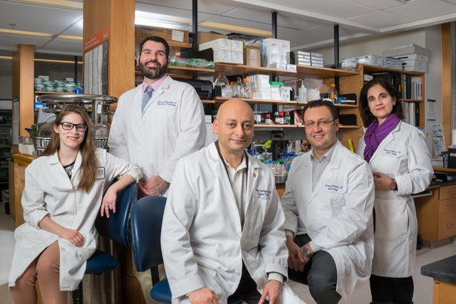 The June issue of the global scientific journal Nature Communications features work by (pictured, from left) graduate student Diana Dunn; research assistant Mark Woodford; biochemist/molecular biologist Mehdi Mollapour, PhD; urologist Gennady Bratslavsky, MD; and assistant professor Dimitra Bourboulia, PhD. The research team also includes professor Stewart Loh, PhD; graduate student Adam Blanden and librarian Wendi Ackerman. (PHOTO BY ROBERT MESCAVAGE)