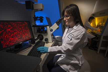 In molecular profiling, a particular patient's cells are studied for their unique biomarkers, or indicators of the presence or severity of disease. This profiling holds the promise of improving current methods of cancer diagnosis and treatment. Above, postdoctoral research fellow Malvina Prapa, PhD, examines slides of brain cancer cells on a computer screen. (PHOTO BY ROBERT MESCAVAGE)