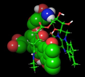 In this model, doxorubicin is represented by spheres and vitamin B2 is indicated by interlocking sticks. (FROM THE LAB OF JUNTAO LUO, PhD)