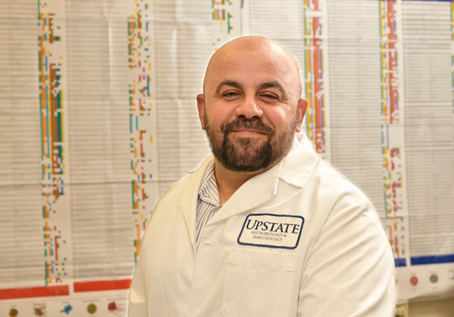 Immunologist Mobin Karimi, MD, PhD, runs a research lab at Upstate. (photo by William Mueller)