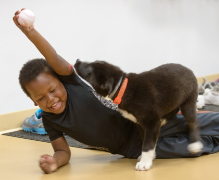 Levi Haddad, 4, plays with a puppy from Pet Partners of CNY at the H.O.P.E. event at the Baldwinsville YMCA.  Levi and Alayah (below) are both being treated for acute lymphoblastic leukemia at the Upstate Cancer Center and Upstate Golisano Children's Hospital. They became friends at the May event.