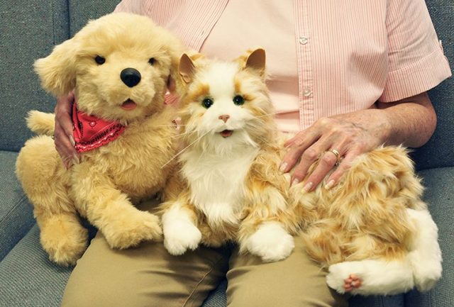 Battery-operated companion dog and cat (photo by Richard Whelsky)