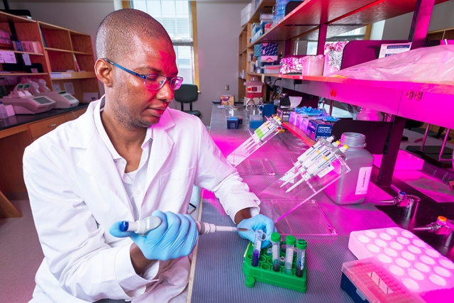 "Alaji Bah, PhD, is searching for ways to keep cancer-suppressing genes ""turned on""— research that may lead to new medications. (photo by William Mueller)"