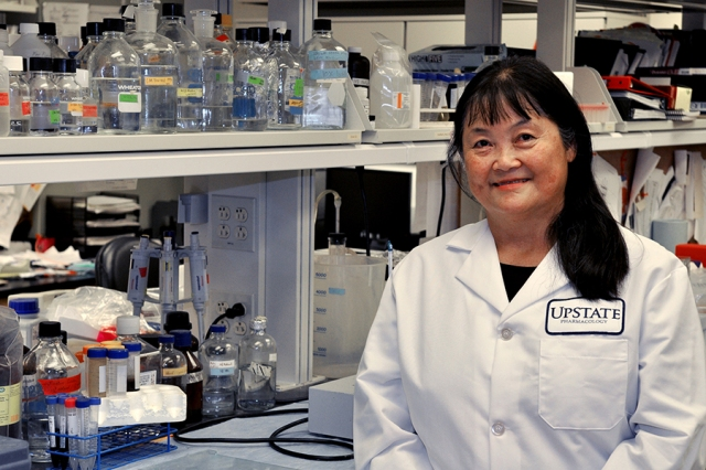 Ying Huang, MD, PhD, is studying a protein that makes breast cancer resistant to chemotherapy. (photo by Richard Whelsky)
