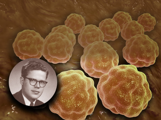 """Paul Parkman, MD (inset, shown against a backdrop closeup of the rubella vaccine), graduated first in his class at Upstate in 1957. He became a pediatrician and virologist who helped isolate the rubella virus, develop the first widely applicable test for rubella antibodies and the first rubella vaccine. """"With the exception of safe drinking water, vaccines have been the most successful medical interventions of the 20th century,"""" Parkman says.(Rubella vaccine photo courtesy of Sciencesourceimages.Photo of Paul Parkman courtesy of Archives and Special Collections, Upstate Medical University Health Sciences Library)"""
