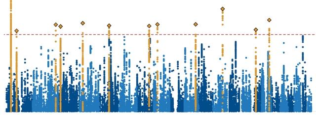 ADHD genome chart
